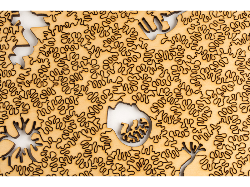 Nervous System, Generative Jigsaw Puzzle