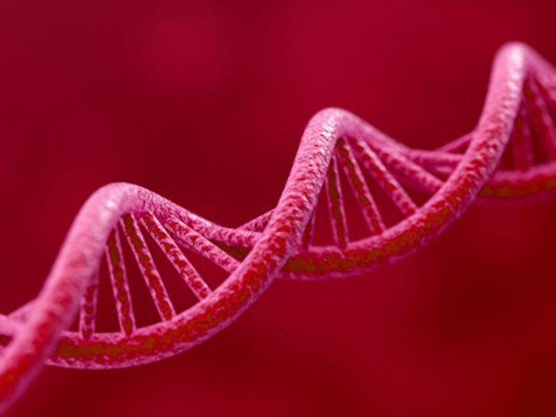 E8TWK0 3d render of DNA on red background