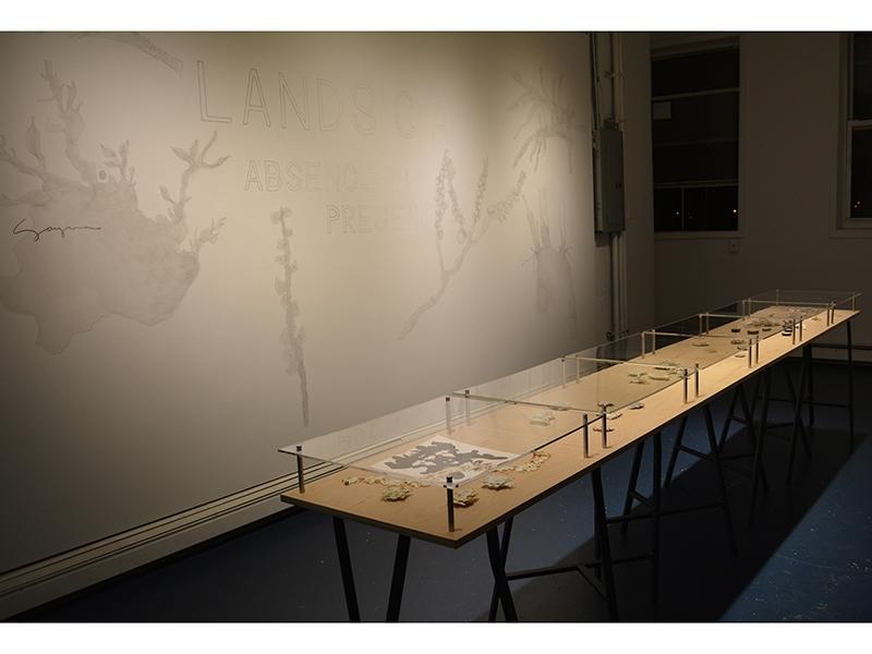 "Installation view, Sayumi Yokouchi, ""Landscape—Absence Is Present"""