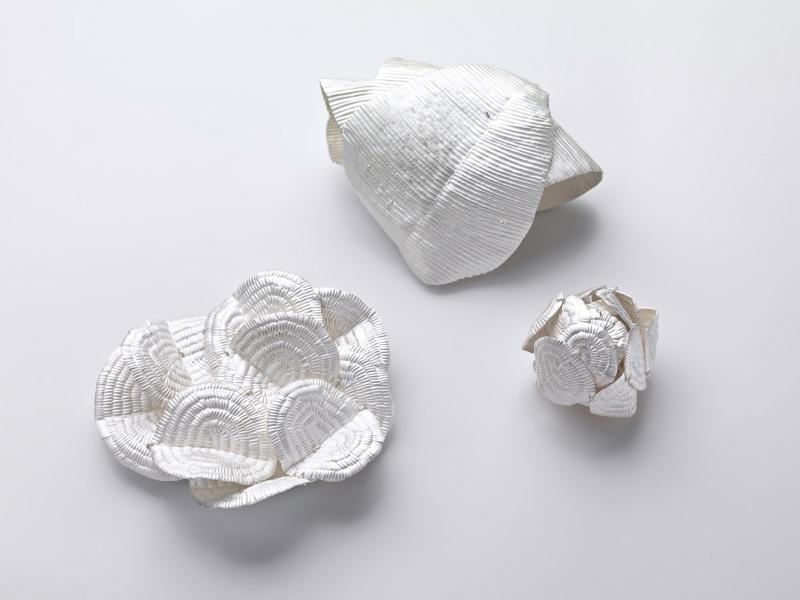 Julie Blyfield, Soft Impression