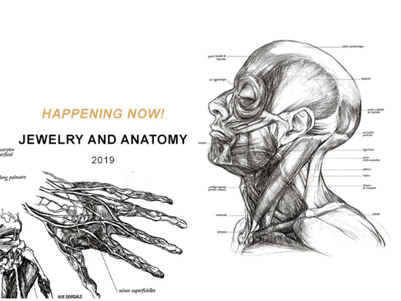 Tincal lab presents Jewelry and Anatomy